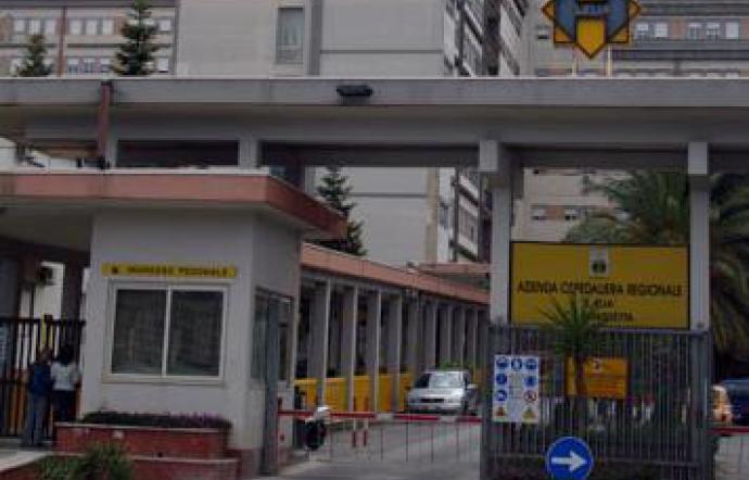 Punto da un'ape, morto in ospedale a Caltanissetta per choc anafilattico