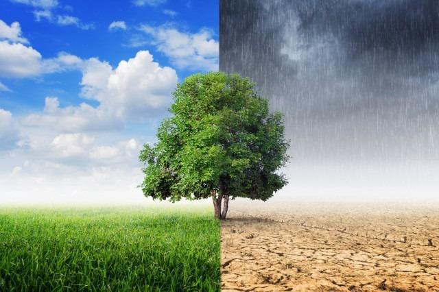 Clima: al via una piattaforma per il contrasto ai cambiamenti