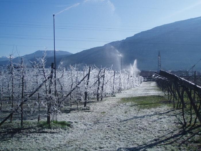 """Maltempo, Coldiretti: """"In Sicilia danni per milioni di euro"""""""