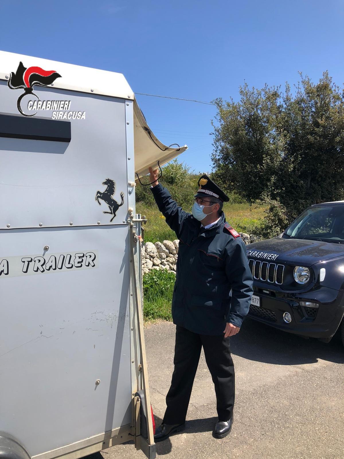 Noto, bloccata corsa clandestina di cavalli sulla Maremonti: 16 denunciati