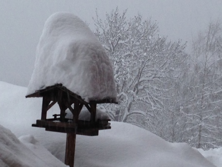 Maltempo, spunta la prima neve a Cortina D'Ampezzo