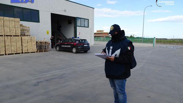 Droga, sequestro di beni per 2,5 milioni di euro a 58enne di Foggia