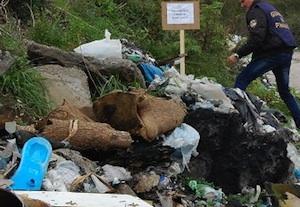 Sequestrata a Nicosia una discarica di rifiuti speciali: un denunciato