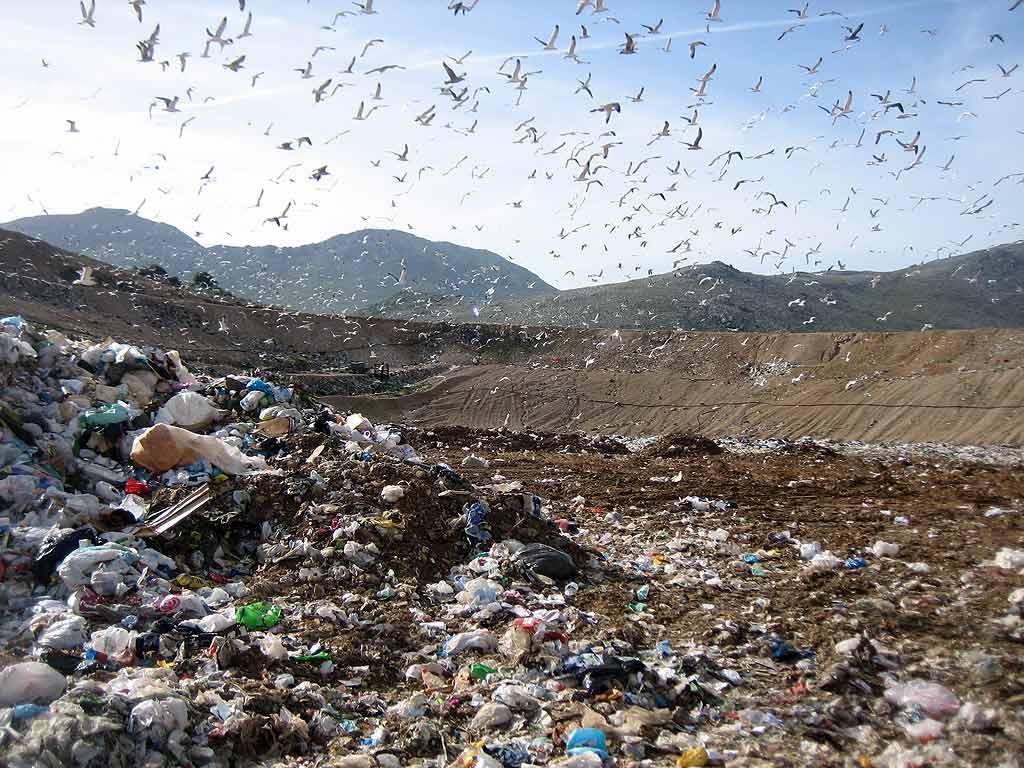 Smaltimento dei rifiuti a Vittoria, disservizi per il conferimento dell'organico