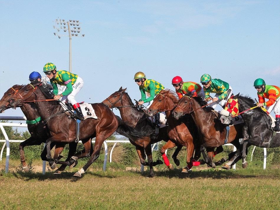 Galoppo a Siracusa, per i cavalli di 2 anni 'Freccia rossa' è tra i favoriti