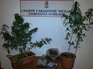 Giardiniere di professione, coltivava pure la marijuana: scoperto ad Aci Catena