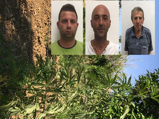 Cinque quintali di droga sequestrata a Centuripe, in carcere 3 catanesi