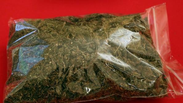 Droga, la polizia di Catania scopre e sequestra busta con marijuana