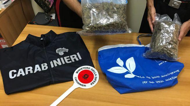 Droga, nascondono in auto 25 chili di marijuana: 3 arresti nel Barese