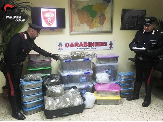 Riposto, 50 chili di marijuana e merce rubata: un arresto