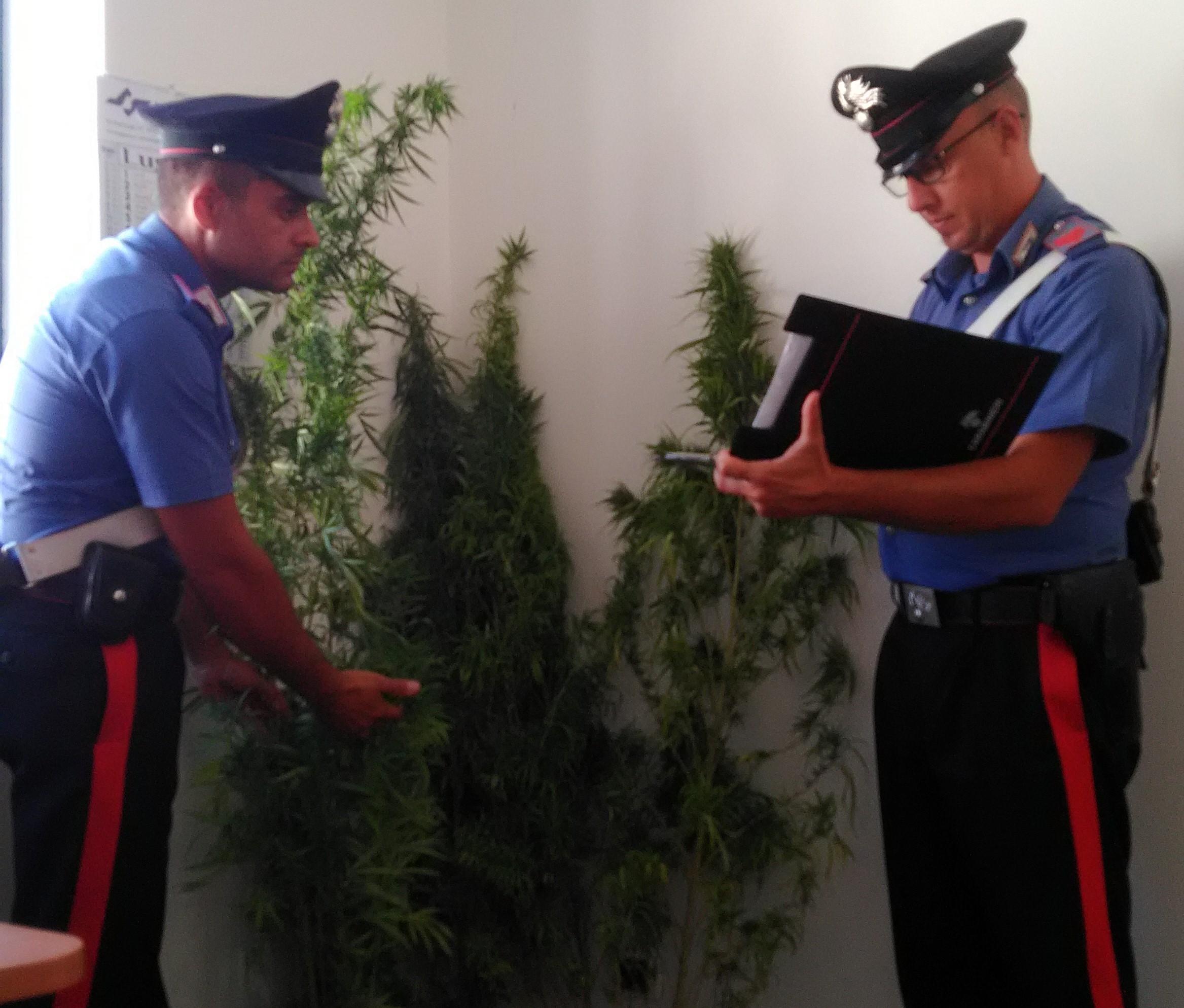 Carabinieri, lotta allo spaccio di droga: arresti a Modica e Scicli