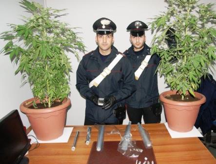 Randazzo, coltivava e confezionava la droga in casa: arrestato giovane di 21 anni