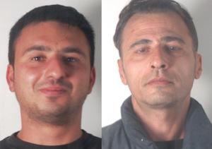 Lentini, tentano di rubare 300 chili di limoni: arrestati