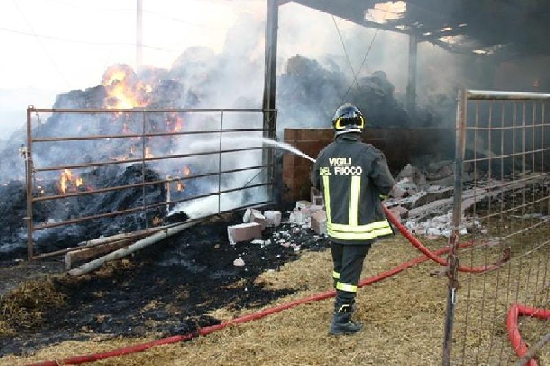 Partinico, incendio in un fienile: muore tra le fiamme un cavallo