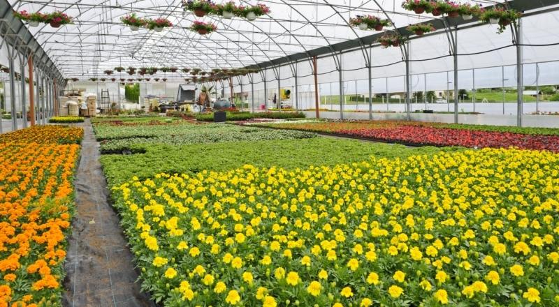 Agricoltura e florovivaismo: a Messina siglato un contratto integrativo
