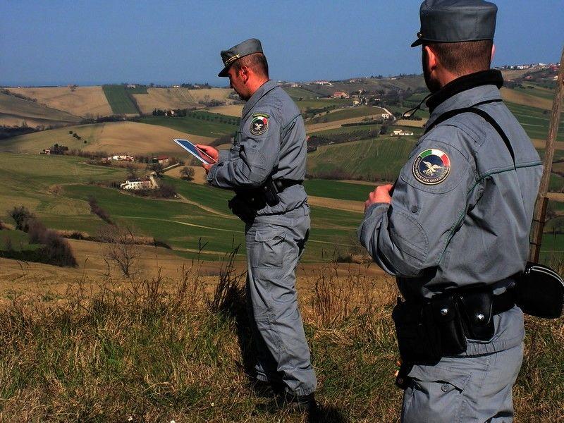 """Regione, Musumeci: """"Via al concorso per le Guardie forestali"""""""