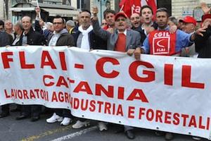 Forestali, in 24 mila vanno a casa: domani manifestazioni a Palermo e Catania