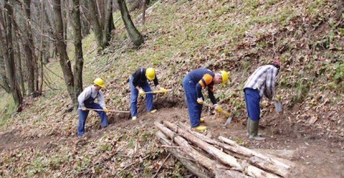 Forestali di Siracusa, i sindacati unitari diffidano l'Ufficio territoriale sul recupero degli arretrati