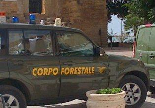 Corruzione, arrestati a Palermo tre funzionari del Corpo Forestale