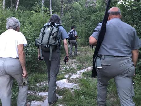Forestali Palermo, la Regione non può pagare le 80 euro promesse