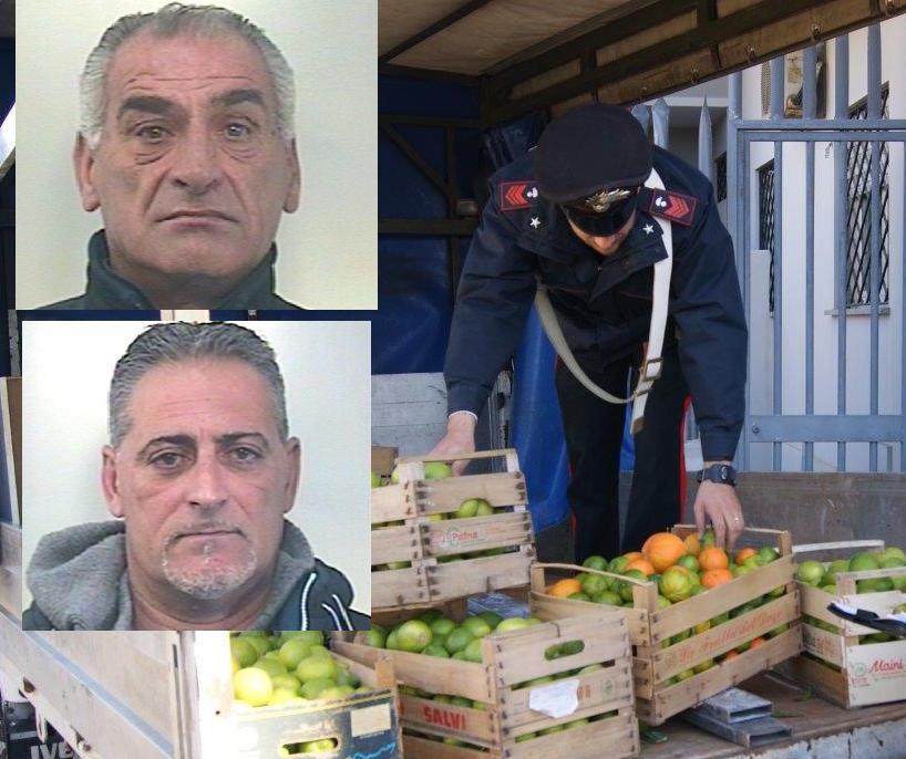 Beccati a rubare limoni, due arresti a Noto
