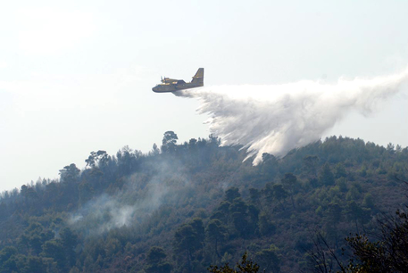 Brucia il Gargano, distrutti ettari bosco e macchia mediterranea