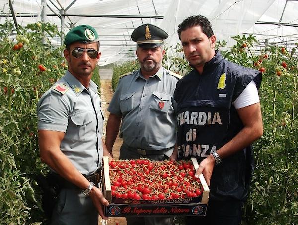 Vittoria, vende pomodori albanesi spacciandoli per italiani: una denuncia