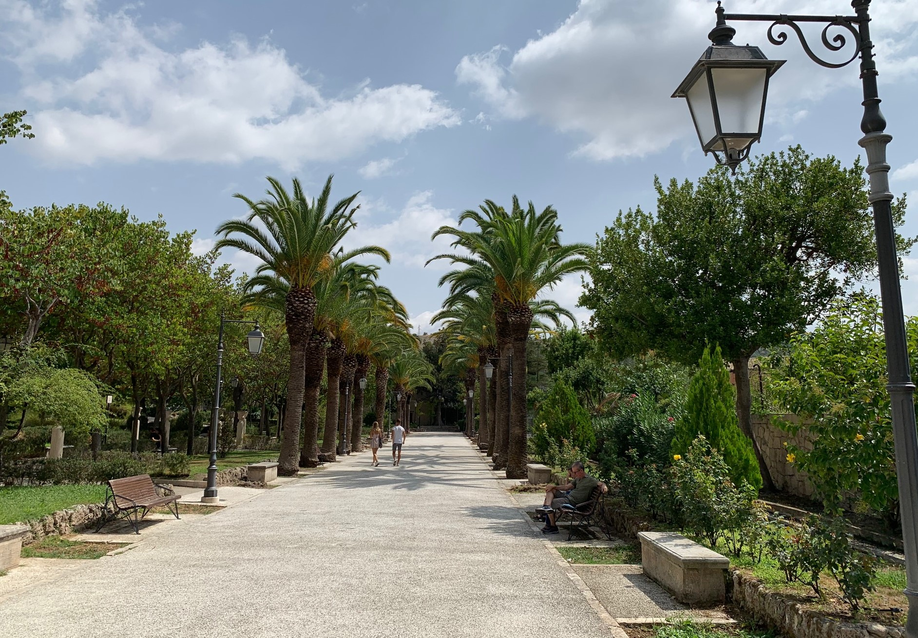 Ragusa, piante mancanti ai giardini iblei: nota di Comibleo