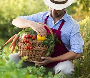 Consumi, il 63% italiani con la zappa in orti e giardini personali