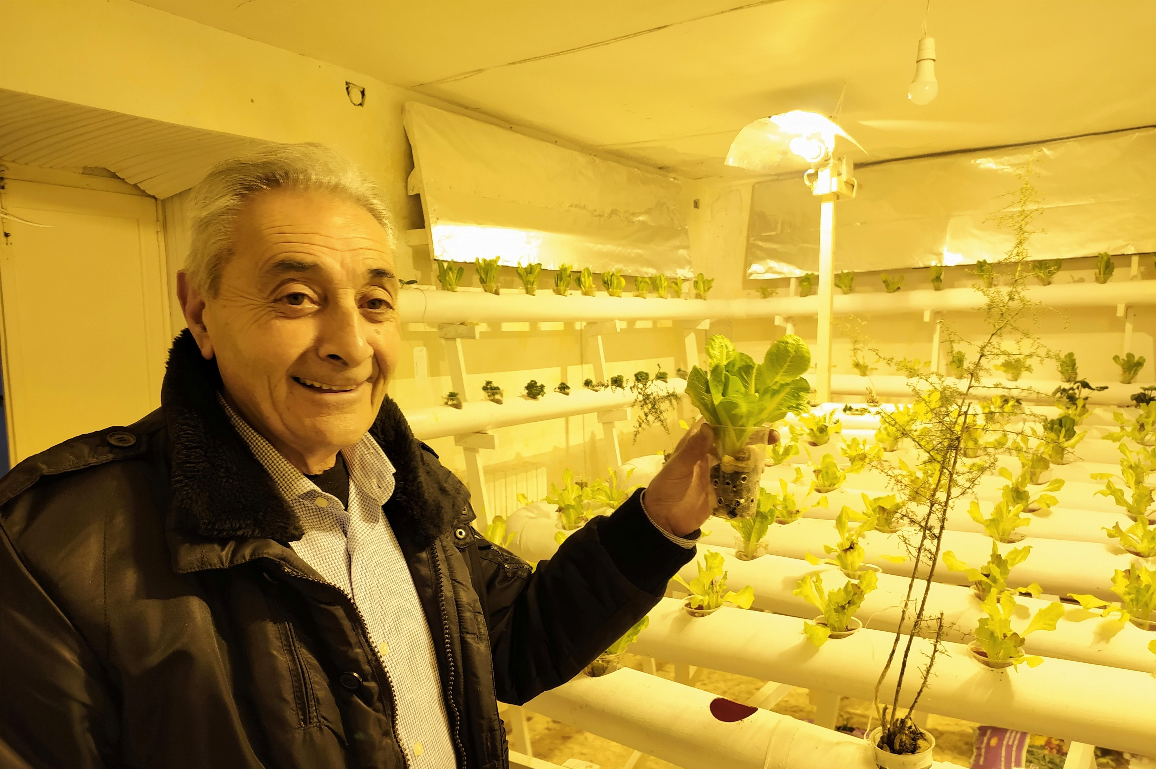 Agricoltura, coltivazione idroponica nel centro storico di Enna