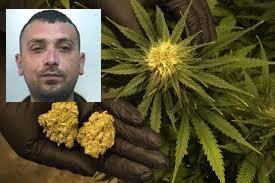 Mascali, nascondeva droga in casa: arrestato un 29enne