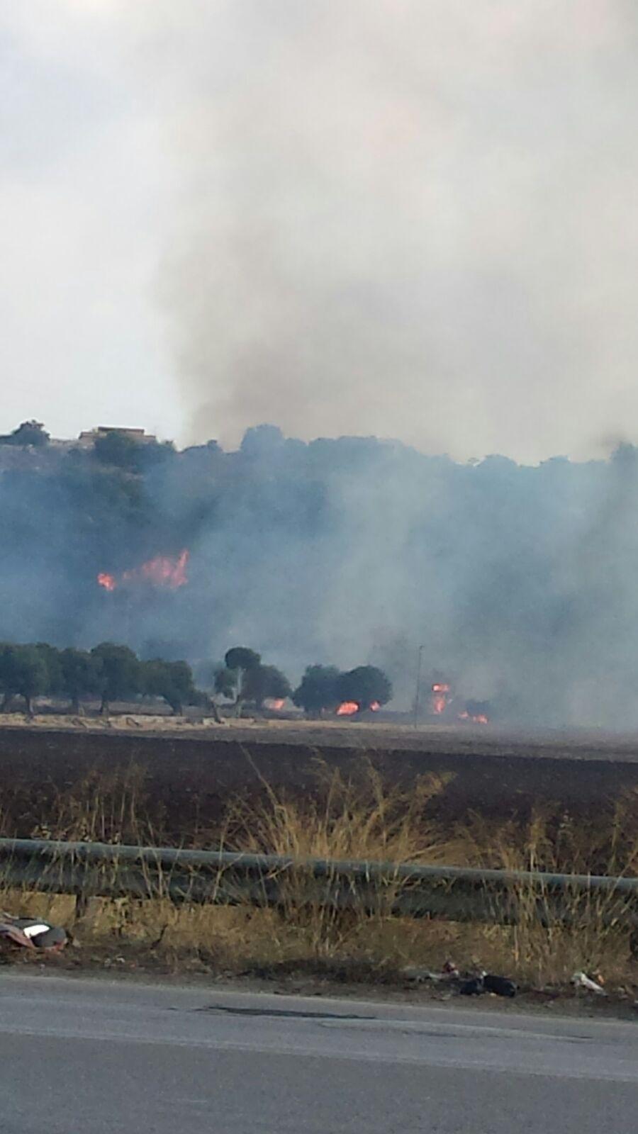 Siracusa, Targia continua a bruciare: i canadair in lotta contro il vento