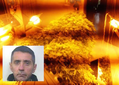 Paternò, una palazzina trasformata in un centro di droga: arrestato il titolare