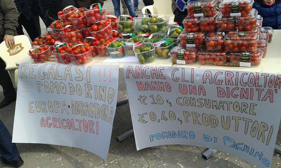 Pomodoro gratis in piazza,  protesta dei produttori di Pachino e Portopalo