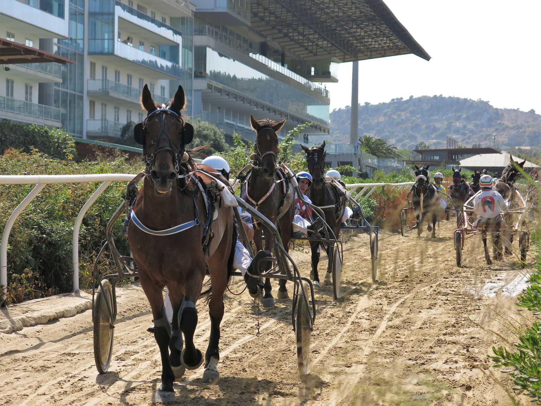 Trotto a Siracusa, in pista per due qualificazioni al trofeo Regioni d'Italia
