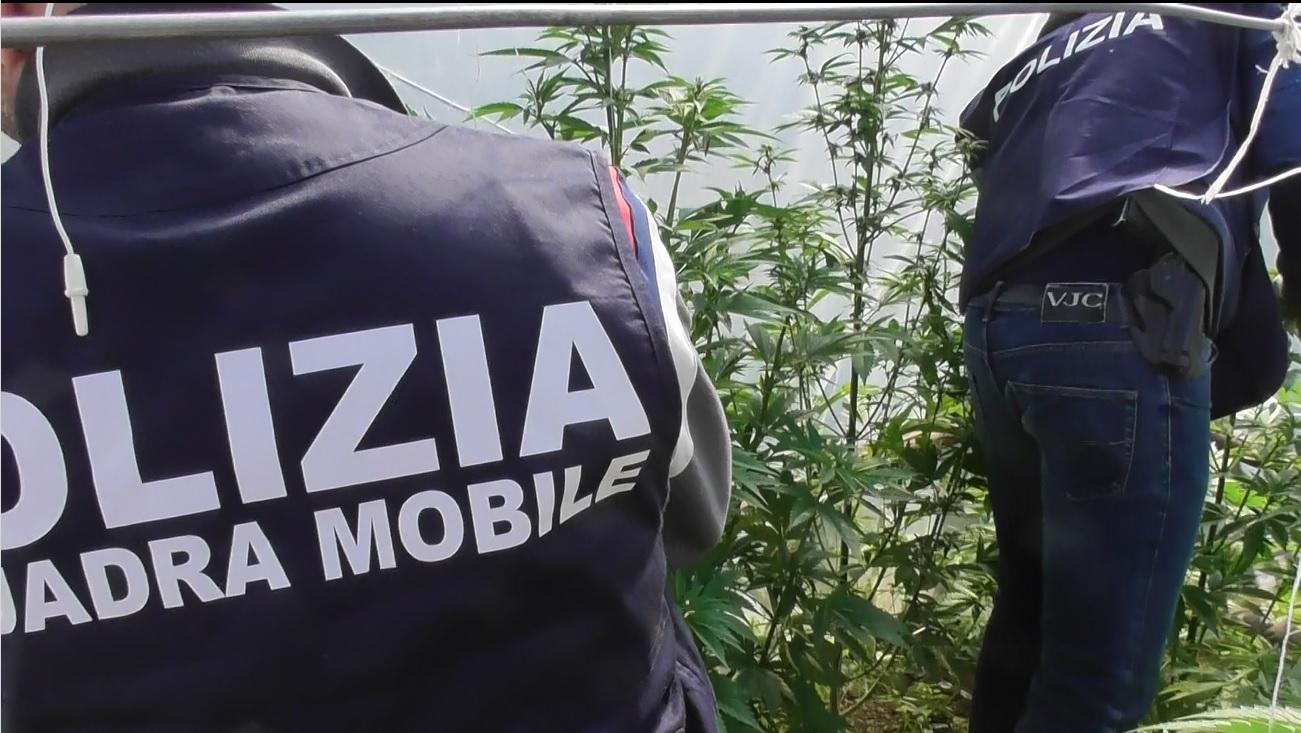 Droga e armi in una serra a Vittoria, arrestati padre e figlio dalla polizia