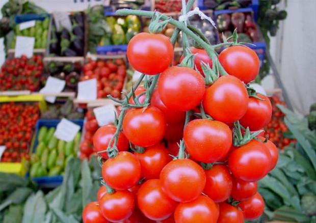 Impennata del pomodorino di Pachino, +142% in cinque anni