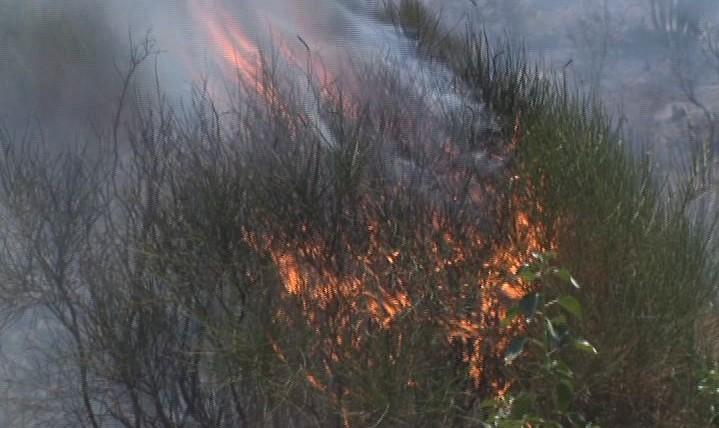 Brucia macchia mediterranea nel Catanese, fiamme da Adrano e Biancavilla