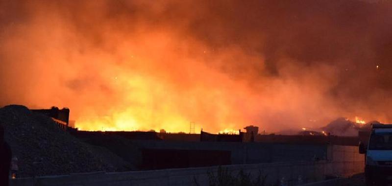 Palermo nella morsa del fuoco:  distrutti ettari di vegetazione