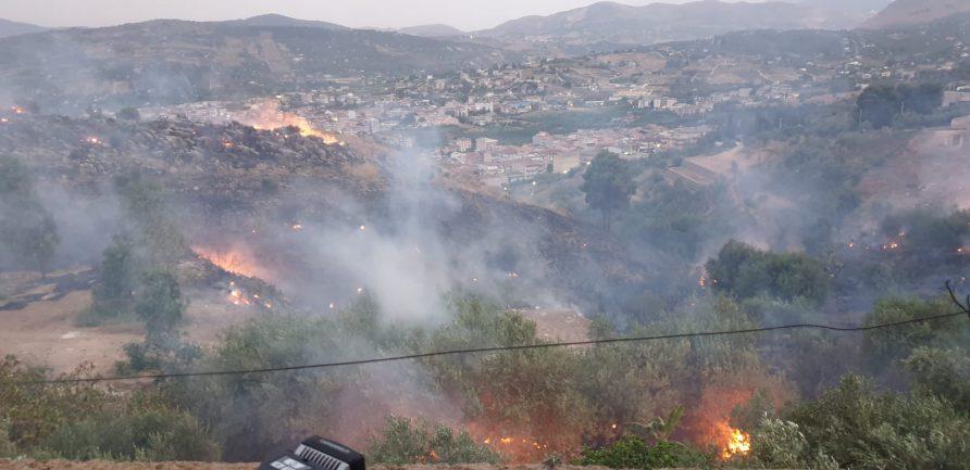 Rogo distrugge Macchia Mediterranea a Misilmeri