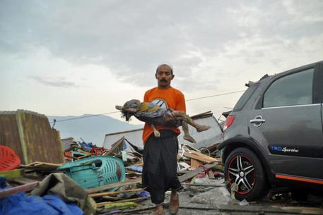 Terremoto e tsunami in Indonesia, almeno 48 morti