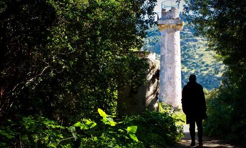 Palermo, al via manutenzione del verde pubblico alla Favorita