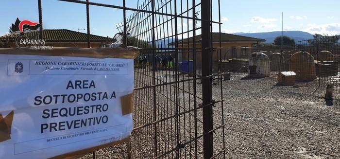 Animali maltrattati, sequestrato il canile comunale a Lamezia Terme
