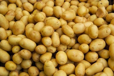 Catanzaro, azienda senza Haccp: sequestrati mille quintali di patate