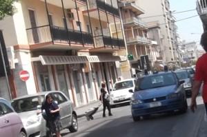 Lentini, due banditi rapinano un marocchino: bottino 570 euro
