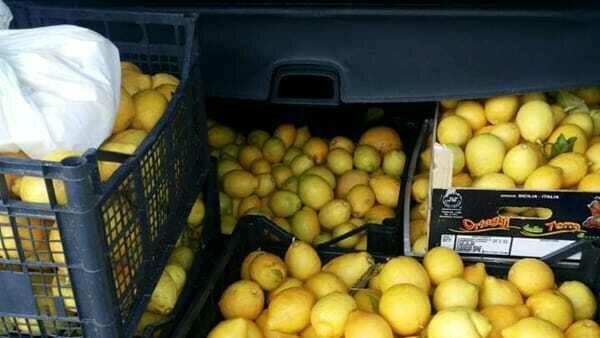 Ruba cassette di limoni sulla Rosolini - Pachino, finisce ai domiciliari