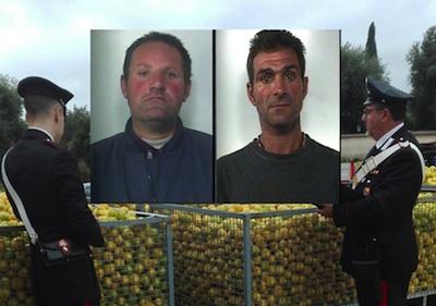 Tre arresti a Floridia per il furto di due  tonnellate di limoni