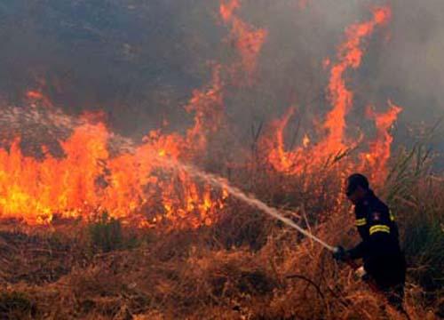 Appicca il fuoco a macchia mediterranea, arrestato nel Palermitano