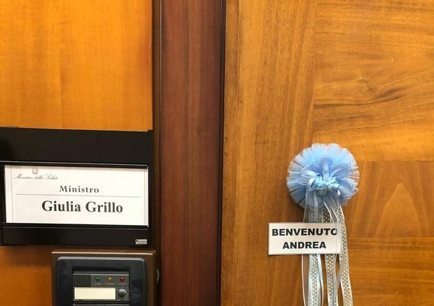 Fiocco azzurro per ministro Grillo: è diventata mamma