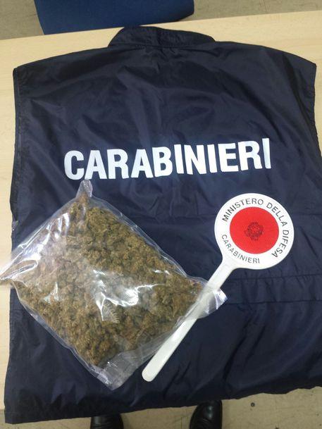 Droga, 525 chili di marijuana sequestrati: nascosti in un furgone a Brindisi
